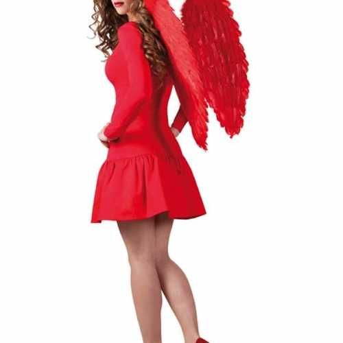 Engelen vleugels rood 65 bij 65