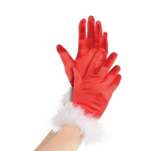 Kerstman handschoenen dames
