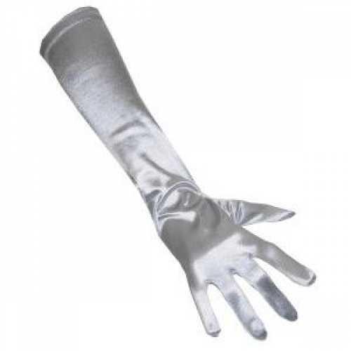 Lange handschoenen zilver