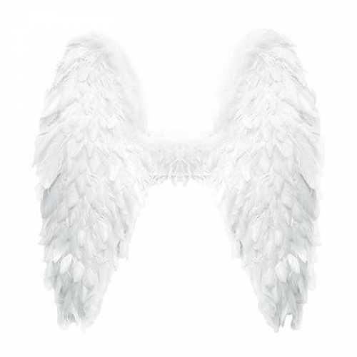 Veren vleugels wit 60
