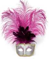 Zilver oog masker roze veren